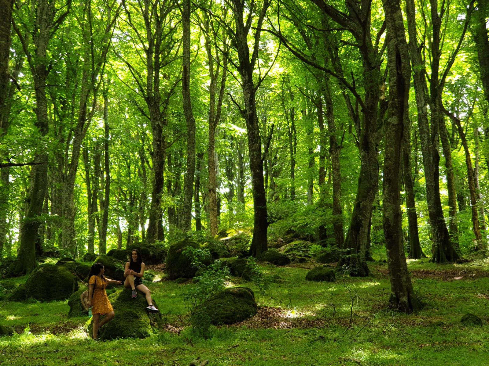 Monte Rufeno nature reserve